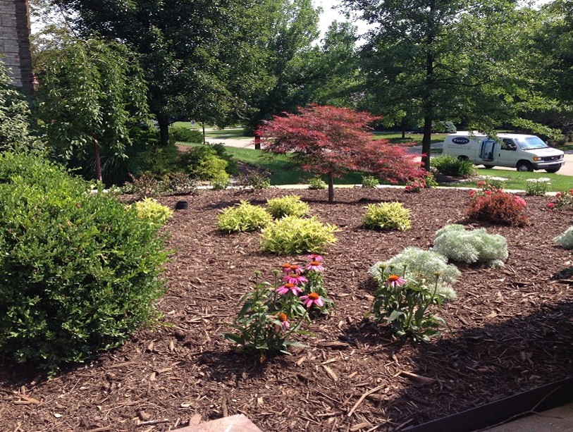 Denny mckeowns bloomin garden centre and landscape landscaping workwithnaturefo